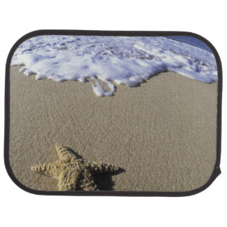 USA, Hawaii, Maui, Makena Beach, Starfish and Car Mat