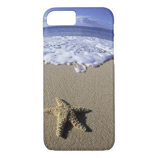 USA, Hawaii, Maui, Makena Beach, Starfish and iPhone 8/7 Case