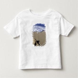 USA, Hawaii, Maui, Makena Beach, Starfish and Toddler T-Shirt