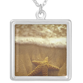 USA, Hawaii, Maui, Maui, Kihei, Starfish and Silver Plated Necklace