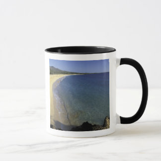 USA, Hawaii, Maui, Maui, Makena Beach, Mug