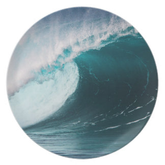 USA, Hawaii, Oahu, Large waves Plate