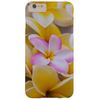 USA, Hawaii, Oahu, Plumeria flowers in bloom 1 Barely There iPhone 6 Plus Case