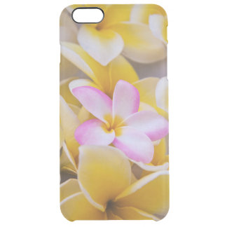 USA, Hawaii, Oahu, Plumeria flowers in bloom 1 Clear iPhone 6 Plus Case