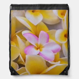 USA, Hawaii, Oahu, Plumeria flowers in bloom 1 Drawstring Bag