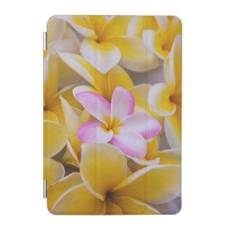USA, Hawaii, Oahu, Plumeria flowers in bloom 1 iPad Mini Cover