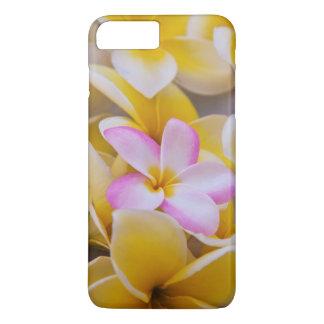 USA, Hawaii, Oahu, Plumeria flowers in bloom 1 iPhone 8 Plus/7 Plus Case