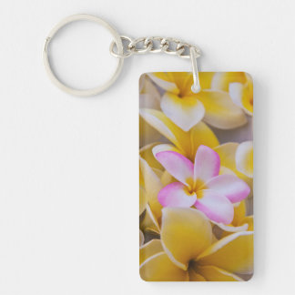 USA, Hawaii, Oahu, Plumeria flowers in bloom 1 Key Ring