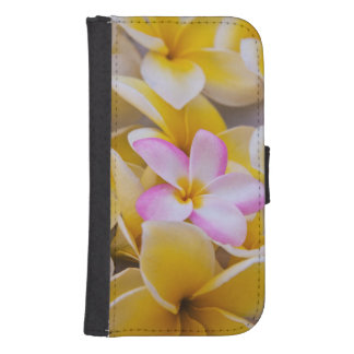USA, Hawaii, Oahu, Plumeria flowers in bloom 1 Samsung S4 Wallet Case