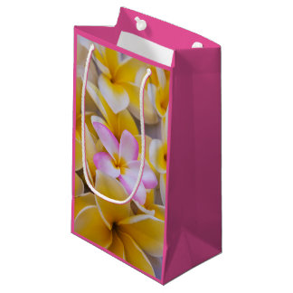 USA, Hawaii, Oahu, Plumeria flowers in bloom 1 Small Gift Bag