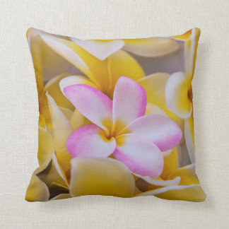 USA, Hawaii, Oahu, Plumeria flowers in bloom 1 Throw Pillow