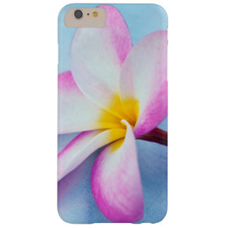 USA, Hawaii, Oahu, Plumeria flowers in bloom 2 Barely There iPhone 6 Plus Case