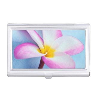 USA, Hawaii, Oahu, Plumeria flowers in bloom 2 Business Card Holder