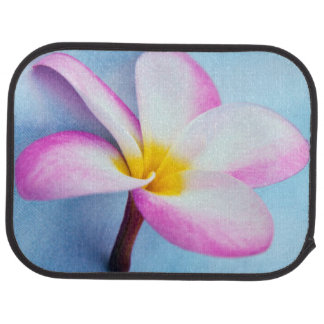 USA, Hawaii, Oahu, Plumeria flowers in bloom 2 Car Mat