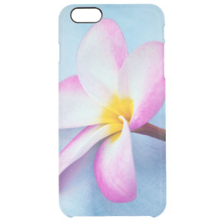 USA, Hawaii, Oahu, Plumeria flowers in bloom 2 Clear iPhone 6 Plus Case