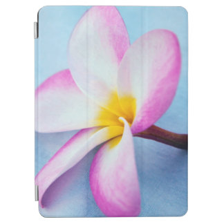 USA, Hawaii, Oahu, Plumeria flowers in bloom 2 iPad Air Cover