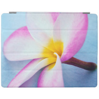 USA, Hawaii, Oahu, Plumeria flowers in bloom 2 iPad Cover
