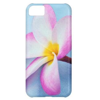 USA, Hawaii, Oahu, Plumeria flowers in bloom 2 iPhone 5C Case