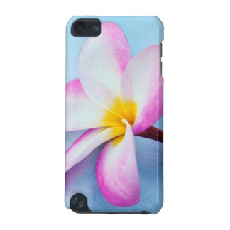 USA, Hawaii, Oahu, Plumeria flowers in bloom 2 iPod Touch (5th Generation) Cover