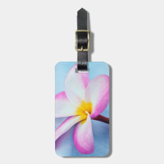 USA, Hawaii, Oahu, Plumeria flowers in bloom 2 Luggage Tag