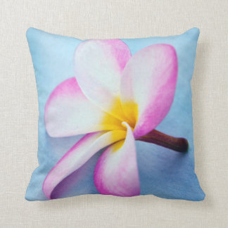 USA, Hawaii, Oahu, Plumeria flowers in bloom 2 Throw Pillow
