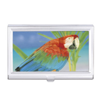 USA, Hawaii. Parrot Business Card Holder