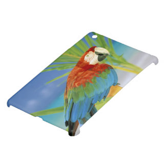 USA, Hawaii. Parrot iPad Mini Cover