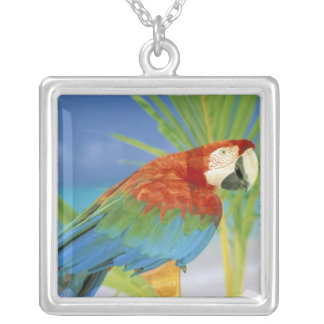 USA, Hawaii. Parrot Silver Plated Necklace