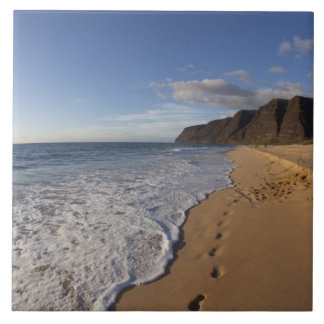 USA, Hawaii, Polihale Beach State Park. Beach Tile
