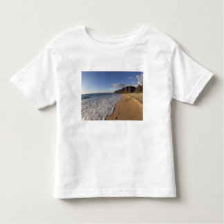 USA, Hawaii, Polihale Beach State Park. Beach Toddler T-Shirt