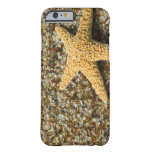 USA, HI, Kauai, Glass Beach with Star fish Barely There iPhone 6 Case
