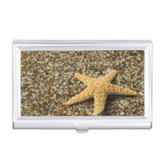 USA, HI, Kauai, Glass Beach with Star fish Business Card Holder