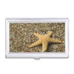 USA, HI, Kauai, Glass Beach with Star fish Case For Business Cards