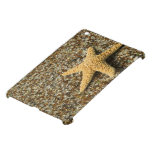 USA, HI, Kauai, Glass Beach with Star fish Case For The iPad Mini