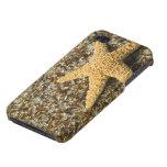 USA, HI, Kauai, Glass Beach with Star fish Cover For iPhone 4