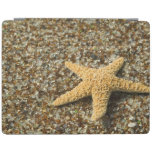 USA, HI, Kauai, Glass Beach with Star fish iPad Cover