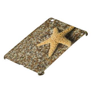 USA, HI, Kauai, Glass Beach with Star fish iPad Mini Cover