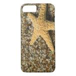 USA, HI, Kauai, Glass Beach with Star fish iPhone 7 Case