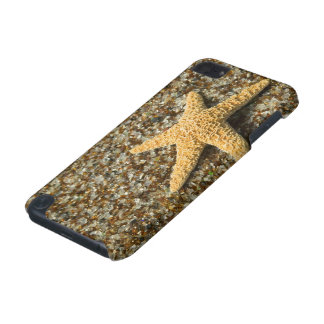 USA, HI, Kauai, Glass Beach with Star fish iPod Touch 5G Case