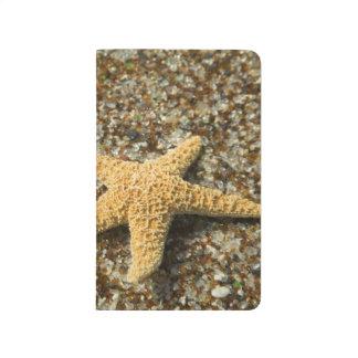 USA, HI, Kauai, Glass Beach with Star fish Journal