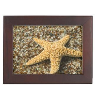 USA, HI, Kauai, Glass Beach with Star fish Keepsake Box