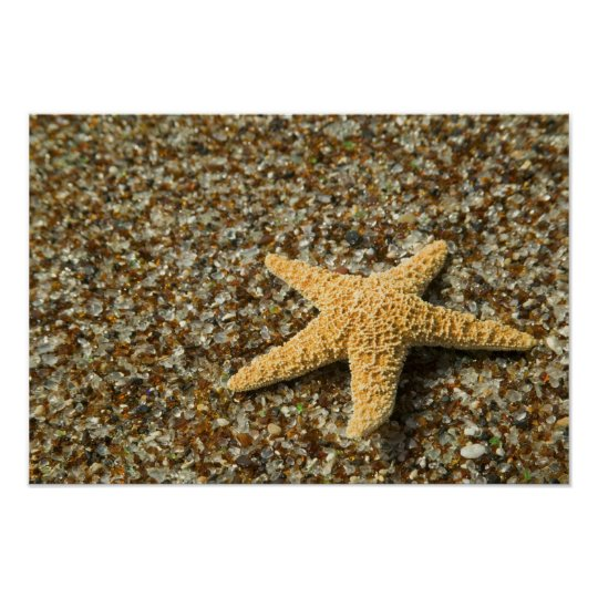 USA, HI, Kauai, Glass Beach with Star fish Poster