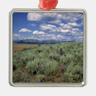 USA, Idaho, Camas Co. Sagebrush and lupine Christmas Ornament