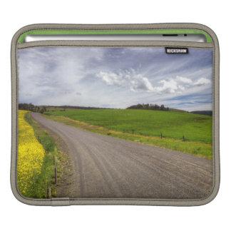 USA, Idaho, Idaho County, Canola Field iPad Sleeve