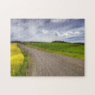 USA, Idaho, Idaho County, Canola Field Jigsaw Puzzle