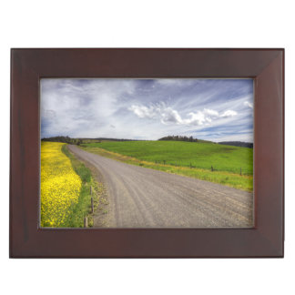 USA, Idaho, Idaho County, Canola Field Keepsake Box
