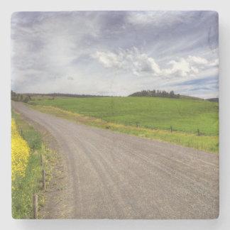 USA, Idaho, Idaho County, Canola Field Stone Coaster