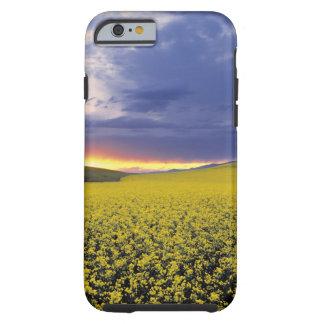 USA, Idaho, Swan Valley. A fiery sunset erupts Tough iPhone 6 Case