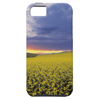 USA, Idaho, Swan Valley. A fiery sunset erupts iPhone 5 Cover