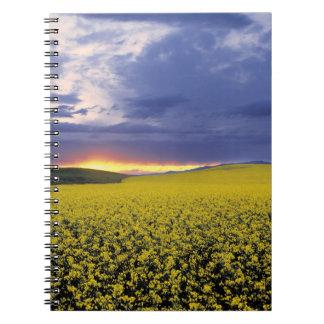 USA, Idaho, Swan Valley. A fiery sunset erupts Notebook